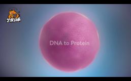 医学知识科普宣传3D动画视频
