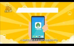 小福鲜菜店APP宣传动画
