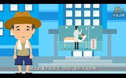 城乡养老保险flash宣传片制作